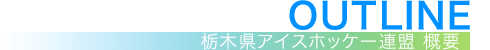 OUTLINE | 栃木県アイスホッケー連盟 概要